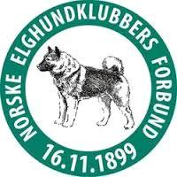 logo NEKF