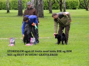 BIR BIM Børvelias Laika og Leo, Hokksund 2015