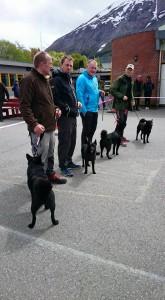 HP Oppdretterklasse, Jens Tore Engevik,  hundane C.I.B DK N UCH NJ(B)CH Bob, Lita,  Laika og Kita