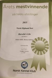 Årets mestvinnende NKK